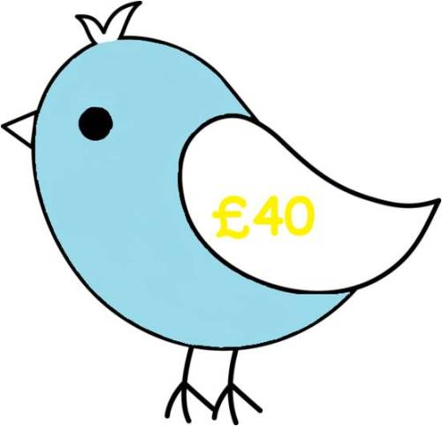 £40 Gift Voucher for all Things Birdie