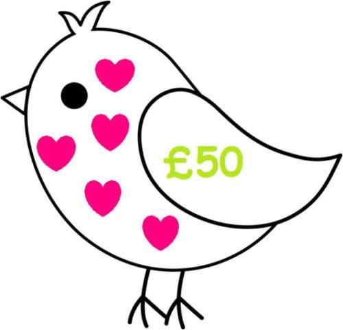 £50 Gift Voucher for all Things Birdie