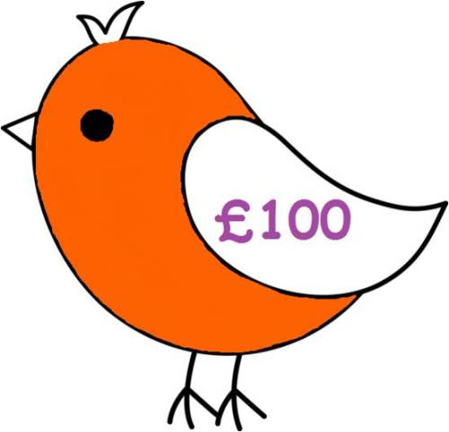 £100 Gift Voucher for all Things Birdie