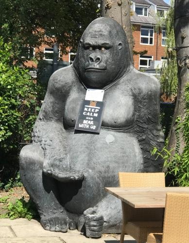 The Broadleys Gorilla