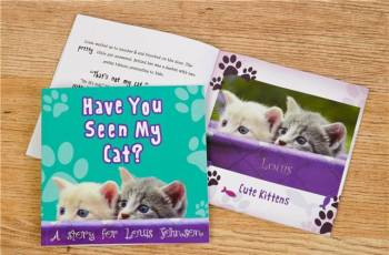 HAVE YOU SEEN MY CAT BOOK