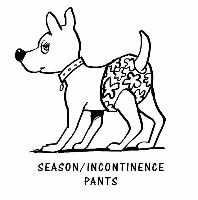 Season / Incontinence Pants