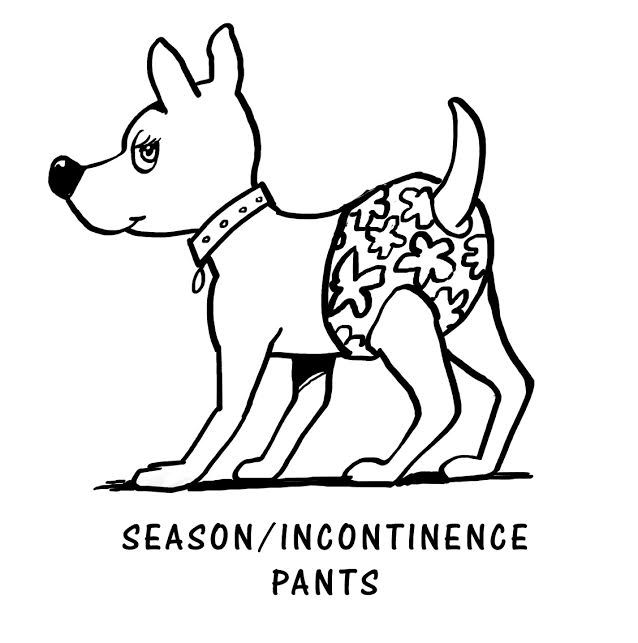 Season / Incontinence Pants