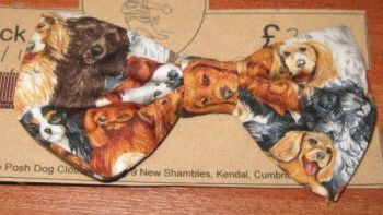 Handmade Posh Dog Bow Tie - 004