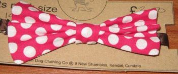 Handmade Posh Dog Bow Tie - 002