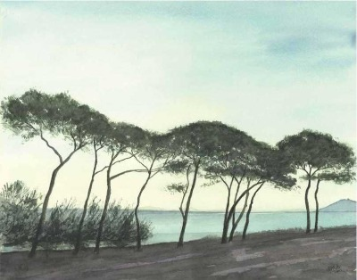 The Pines, Pollenca Bay