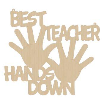Best Teacher Hands Down!