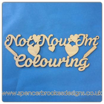 Not Now I'm Colouring Hanger - Adult Colouring Humour