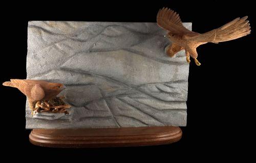 Cliff edge golden eagles