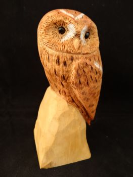 Miniature painted tawny owl