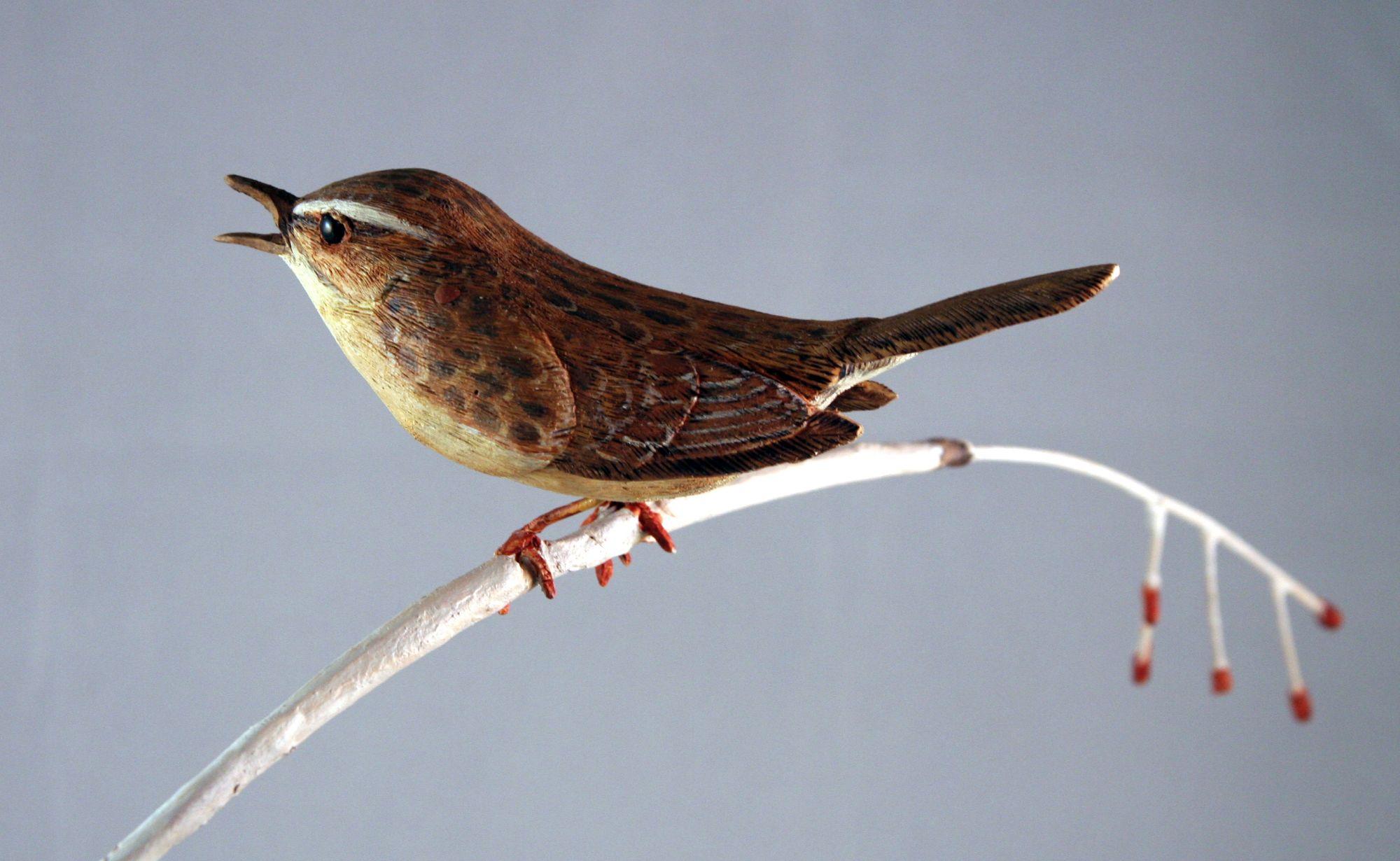 Sedgewarbler