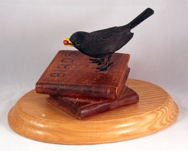 Blackbird on books