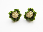 Quirky Vegetable Inspired Cauliflower Cufflinks