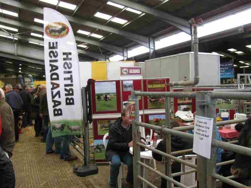beefexpo2014_stand