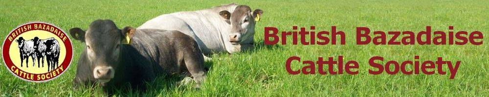 British Bazadaise Cattle Society, site logo.