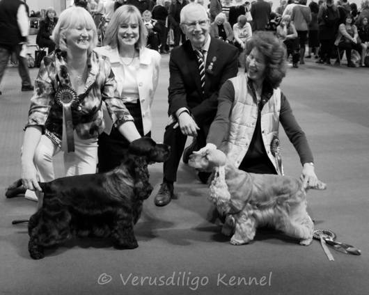 Crufts 2013 Black and White
