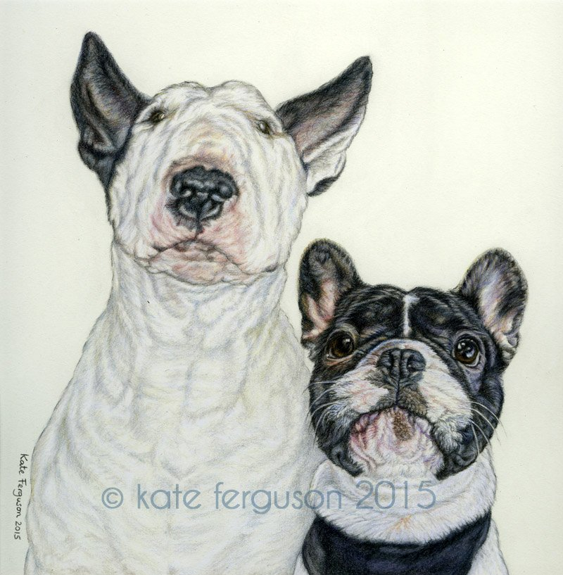 Moby and Frank - coloured pencil