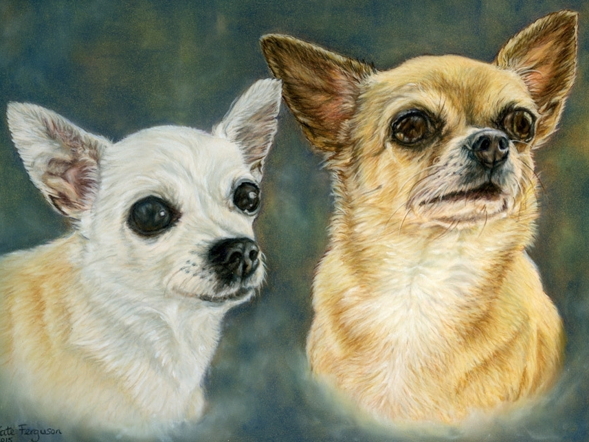 Pastels commission - Amber and Vicky