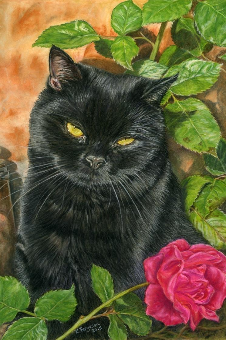 Pastels cat portrait