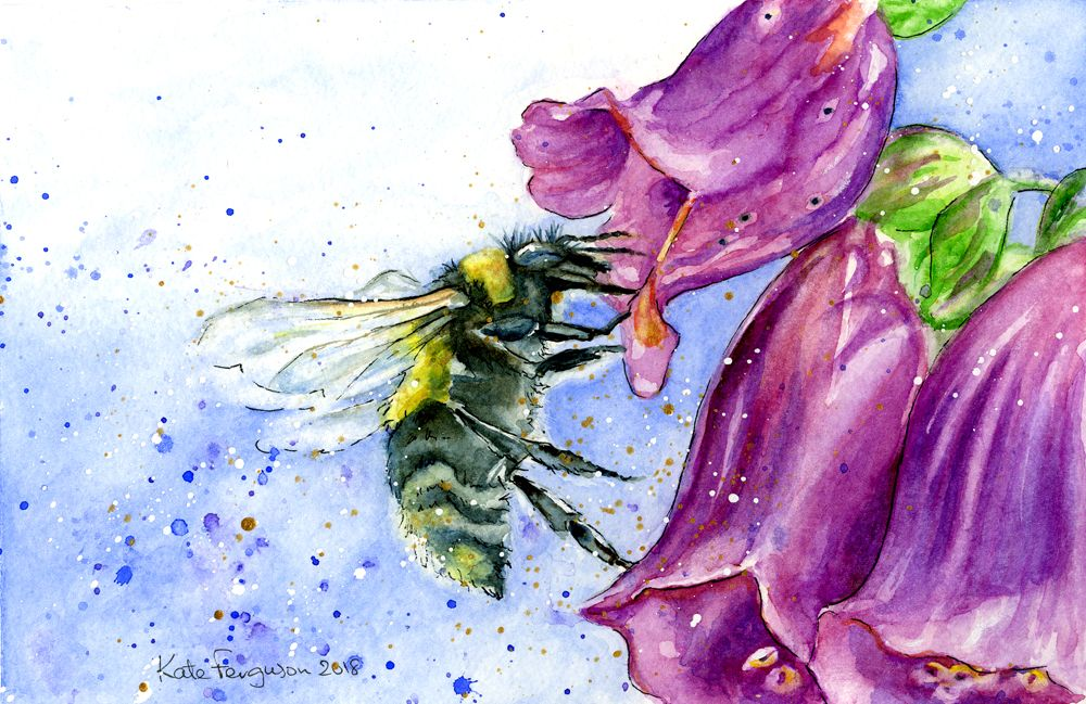 """""""Bee on foxglove"""" - mounted watercolour painting"""