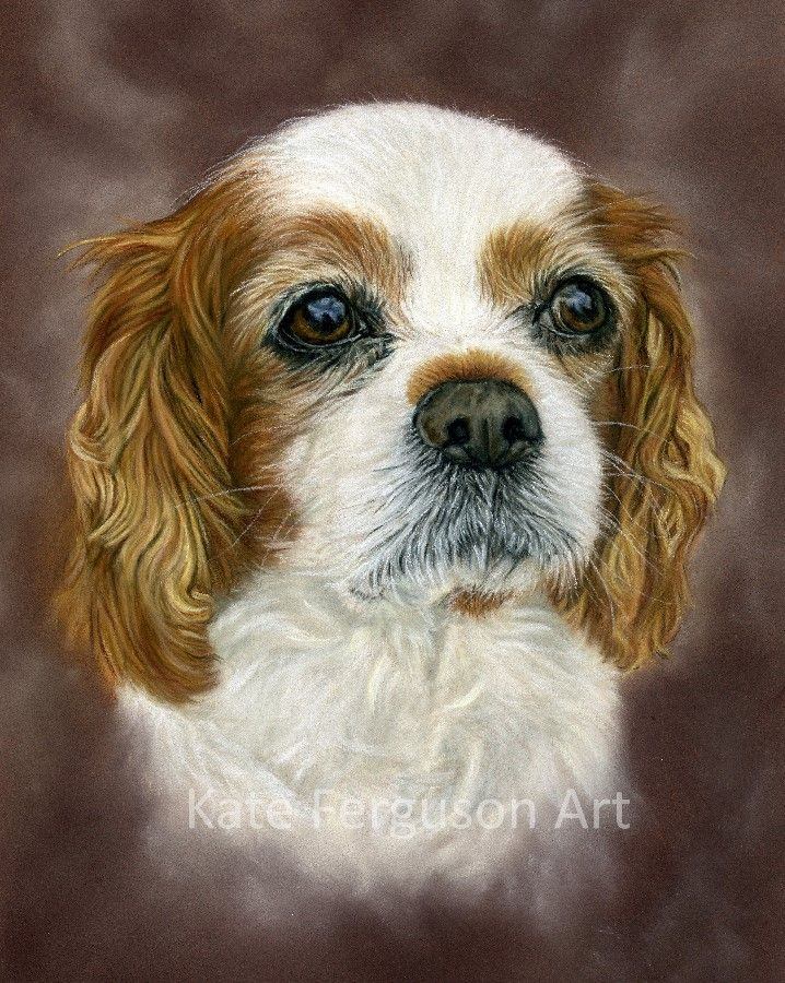 Commission in pastels - Sam