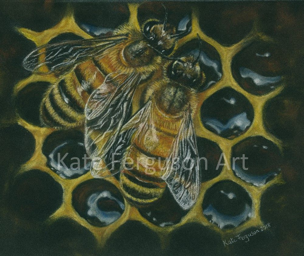 Bees on honeycomb - pastels