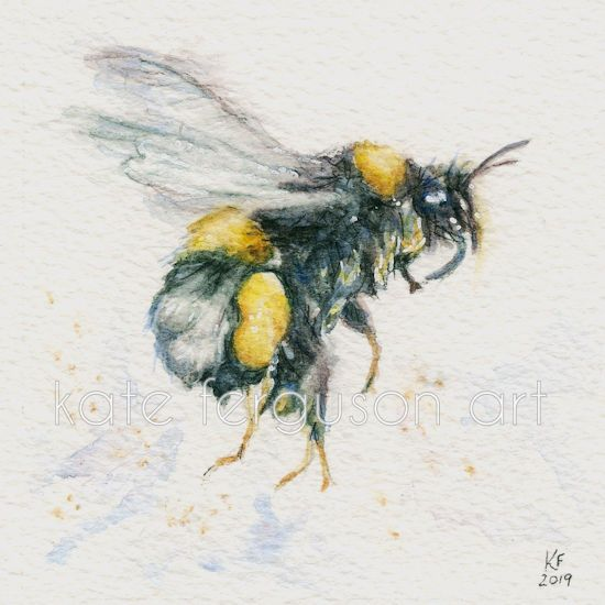 Bee - watercolour