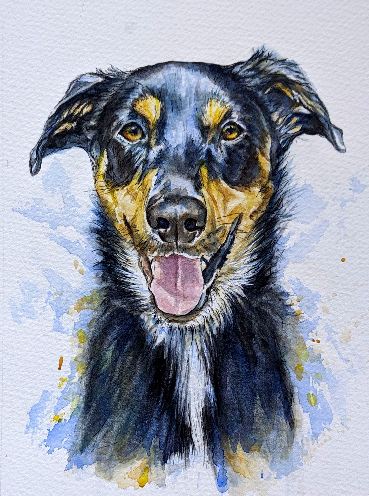 Ink and watercolour dog portrait