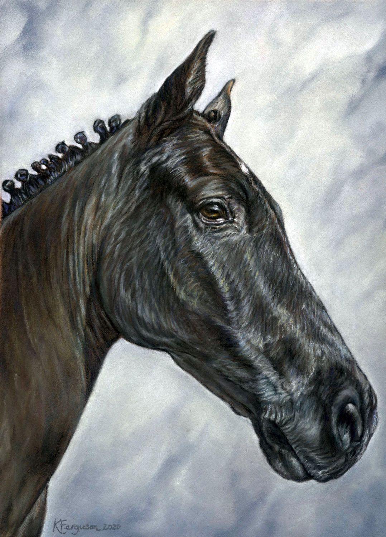 View horse portraits