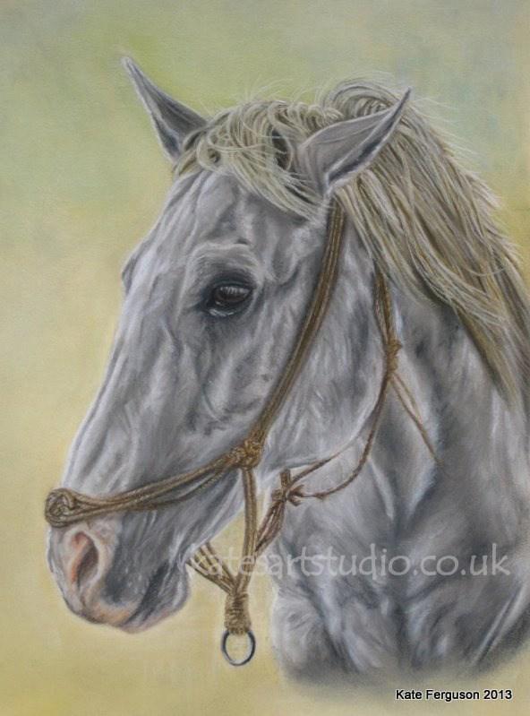 Horse - pastels