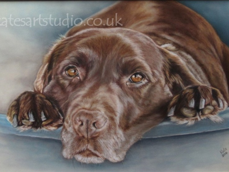 Molly - pastels on pastelmat