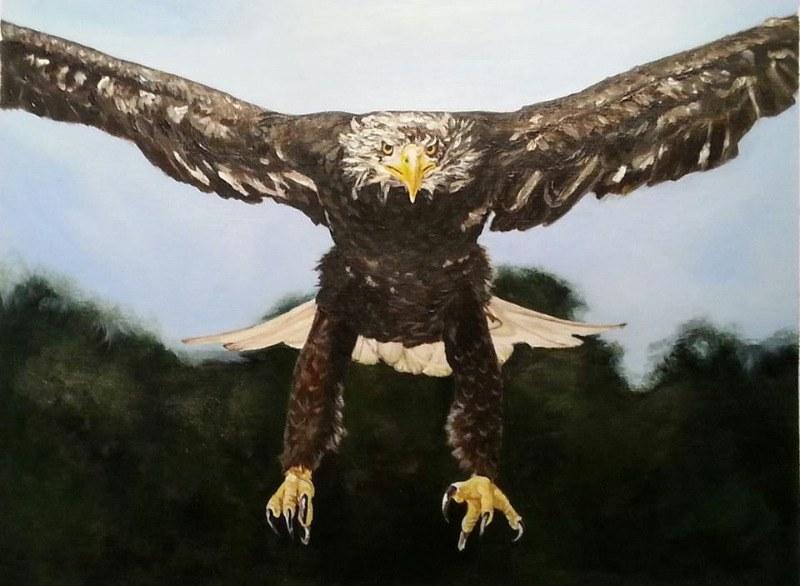 Golden eagle - acrylics