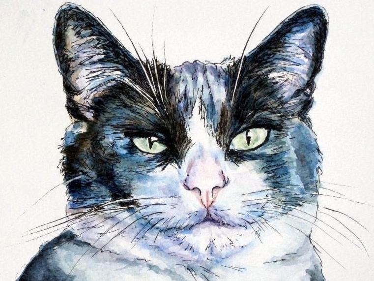 Ink an watercolour portrait