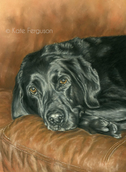 Pastels commission - Niamh