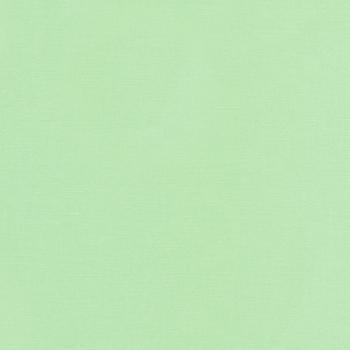 Robert Kaufman Fabrics ~ Kona Solids ~ Mint