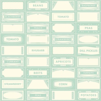Riley Blake ~ Farm Girl ~ Canning Labels Teal