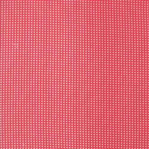 Moda Fabrics ~ Spring-a-Ling ~ Check Strawberry