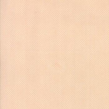 Moda Fabric ~ Corner of 5th and Fun ~ Bias Check Rosie Cheeks