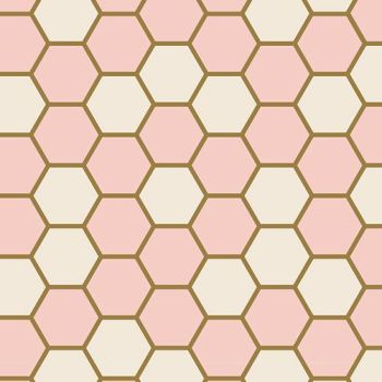 Art Gallery Fabrics ~ Blush ~ Hex Rose