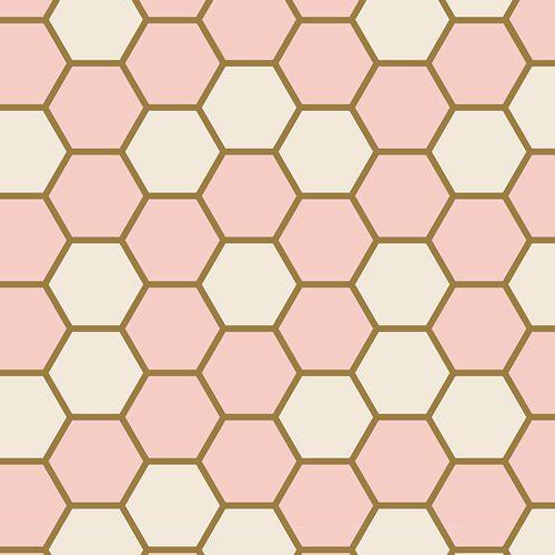 Art Gallery Fabrics ~ Blush ~ Hex Rose