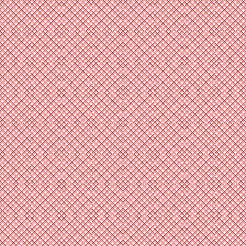 Riley Blake ~ Sweet Prairie ~ Gingham Pink