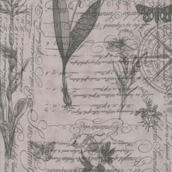Moda Fabrics ~ Quill ~ Botanical Sketchbook Feather