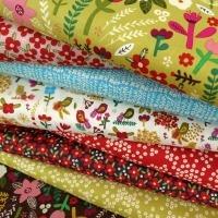 Carolyn Gavin of Ecojot for Windham Fabrics