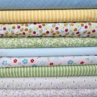 Windham Fabrics ~ Oh Clementine