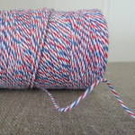 'Divine' Bakers Twine ~ Airmail