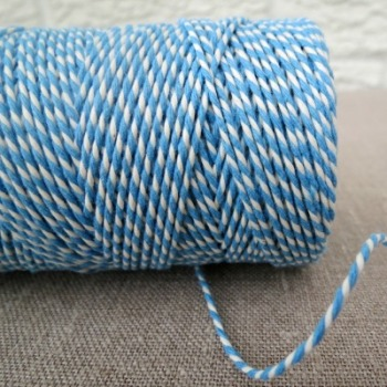 Beautiful Bakers Twine ~ Sky Blue