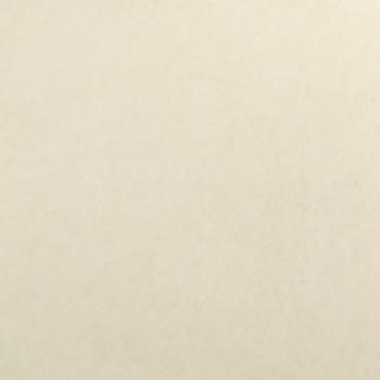 National Nonwovens WoolFelt® ~ Off White