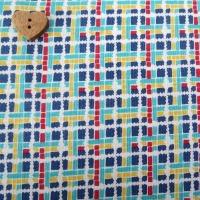 Penny Rose Fabrics ~ 30's Minis ~ Plaid Blue
