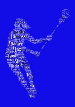 Lacrosse Print - White on Blue