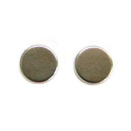 Neodymium magnets(x2)